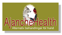 Ajanchehealth logo color 2015.tiff